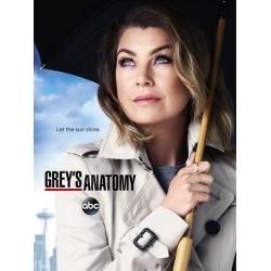 Grey's Anatomy : season 12