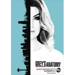 Grey's Anatomy : season 13